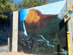 john muir murals