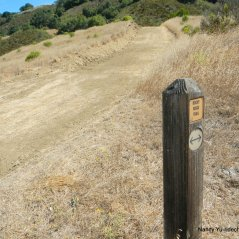 left-stay on rocky ridge trail