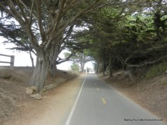pacific grove-rec trail
