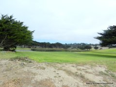 pacific grove golf link