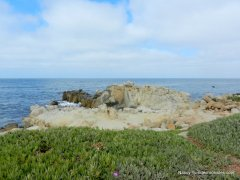 Point Pinos ocean views