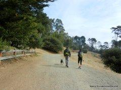 east ridge trail