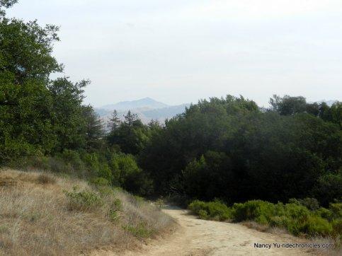 east ridge trail-glimpse of ciablo