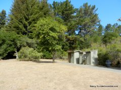 owl/quail picnic area