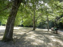 orchard picnic area