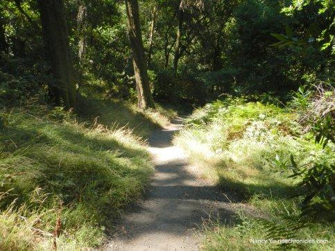 sinawik trail