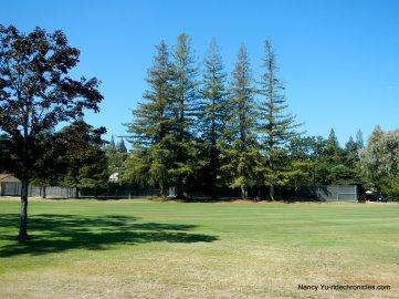 round hill golf course