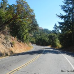 nicasio valley rd descent