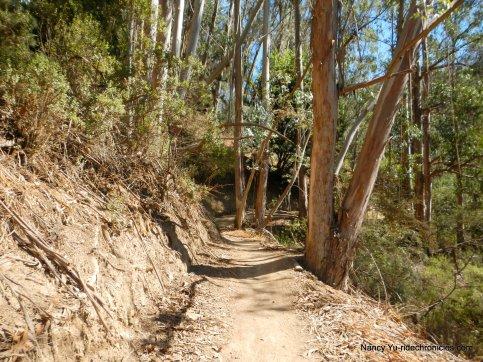 cinderella trail