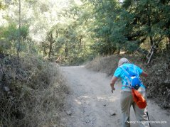 to sequoia bayview trail