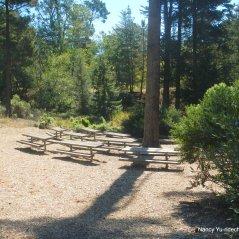 to fern ravine trail