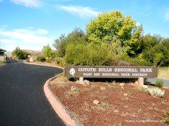 coyote hills park