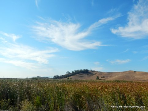 coyote hills park-nike hill