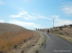 meadowlark trail-nike hill
