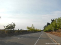 san ramon valley rd