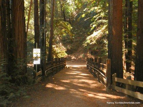 stream trail-creek crossing