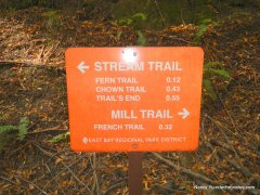 left-stay on stream trail