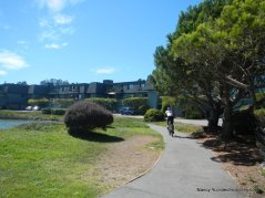 harbor cove way
