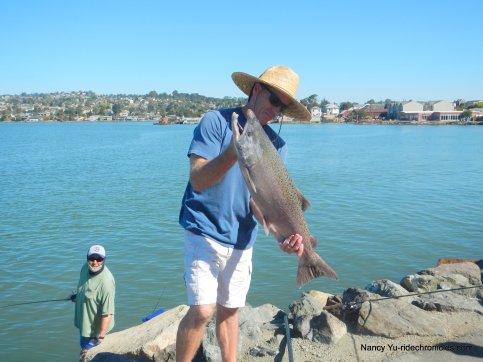 caught salmon