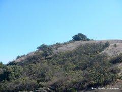 volcanic trail
