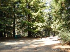 island picnic area