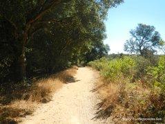 west ridge trail