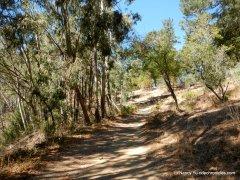 phillips loop trail