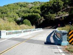 pt reyes petaluma rd-colored bridge