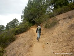 vollmer peak trail