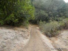 arroyo trail