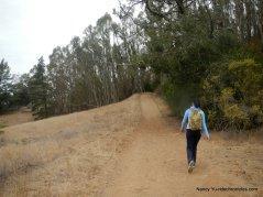 lower big springs trail