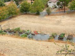 port costa community garden