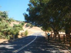 climb up pig farm hill