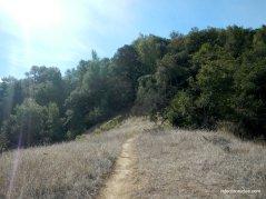 corduroy hills trails