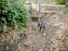 corduroy hills trail