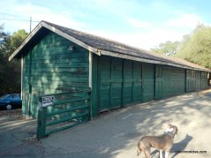 green barn