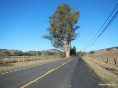 nicasio valle rd