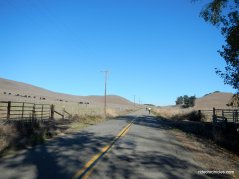 chileno valley rd