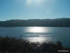 tomales bay