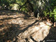trapline trail