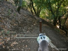to mahogany trail
