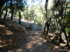 bollinger creek loop trail
