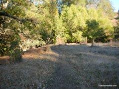 virgil william trail