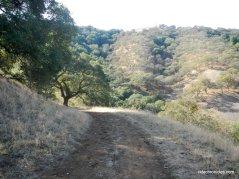 franklin ridfranklin ridge loop trailge loop trail