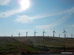 altamont windfarms
