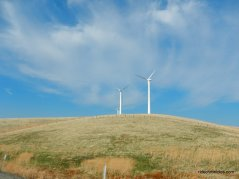 altamont windfarms