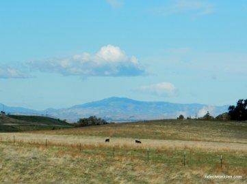 vaca mountains