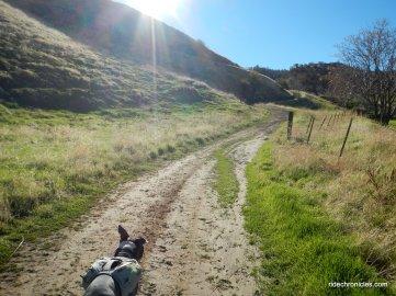 railroad bed trail