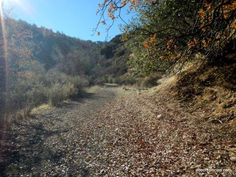 coal canyon trail