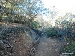 coal canyon trail